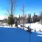 exterieur_hiver_n